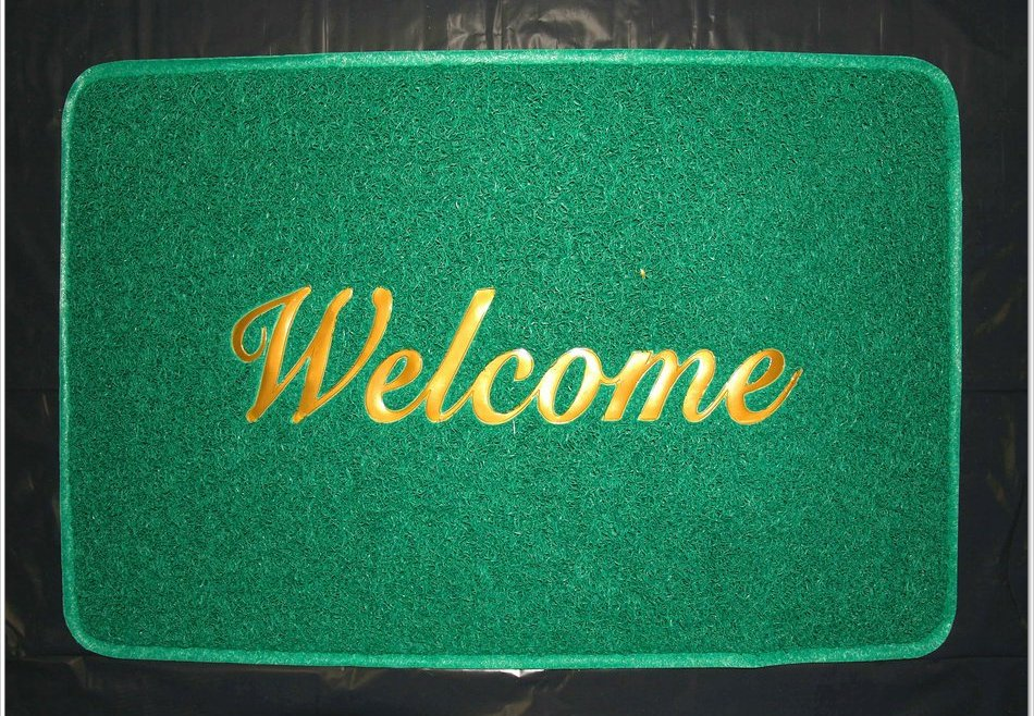 Welcome Elysium. Step on the Green mat! (you can jump over it, no big deal).